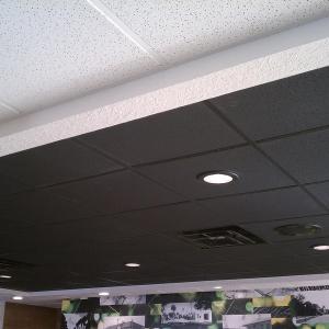 McDonald's - Genesis Stucco Pro Ceiling Panels in Black